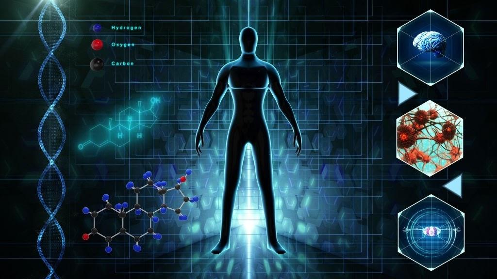 Chức năng của nội tiết tố Testosterone