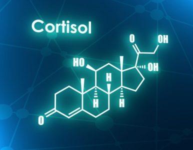 Hormone Cortisol