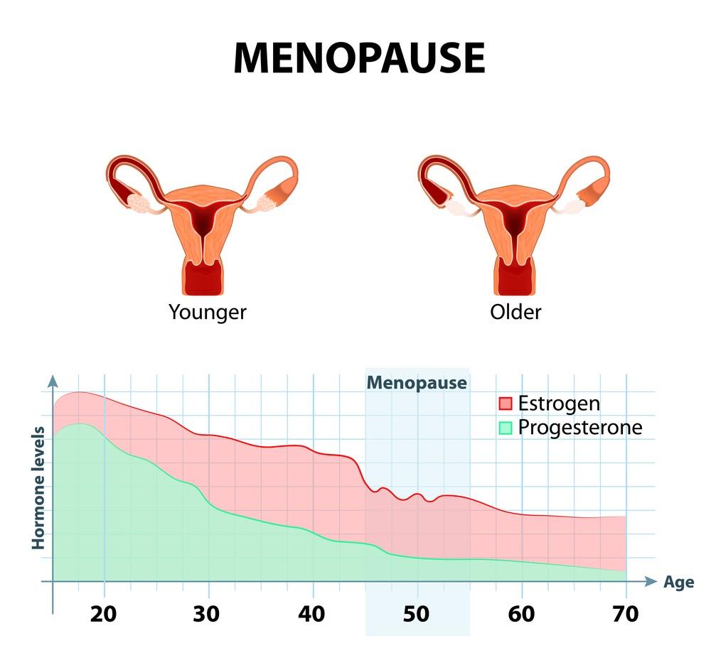 Khô rát âm đạo nguyên nhân nội tiết tố Nữ hormone Estrogen sụt giảm